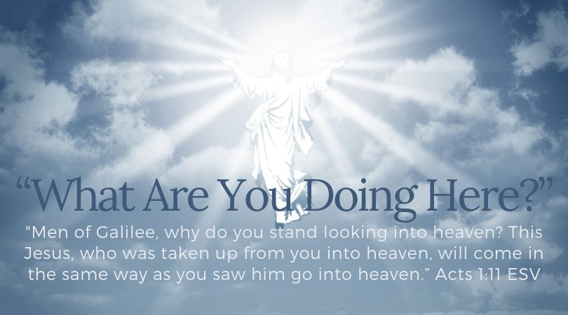 Full Programs Online, via TV Broadcast, & DVD Subscription   Worship